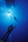 Diving Scene