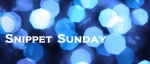 Sunday Snippet