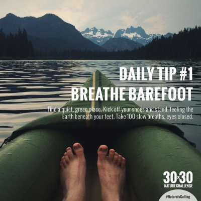 Daily_Tip_1