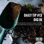 DailyTip13