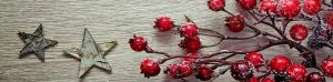 cropped-christmas_decoration-e1481323153799